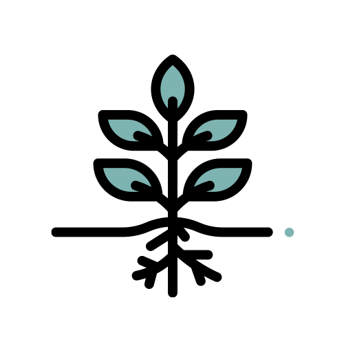 root package Bloom Small Business Services Chicago